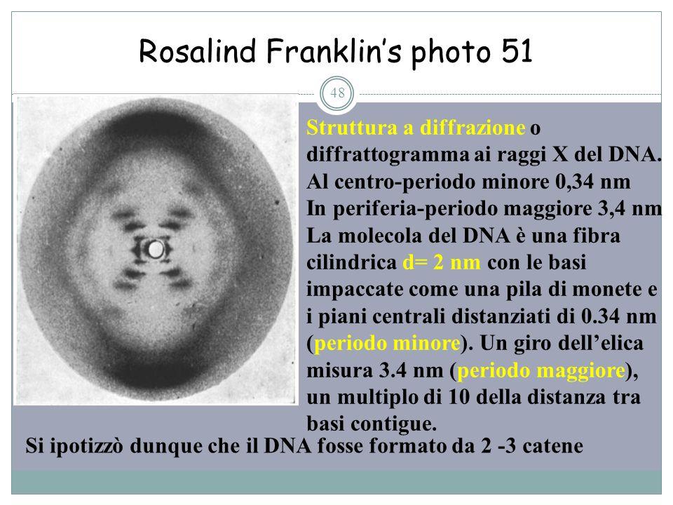 Rosalind Franklins photo 51 48 Struttura a diffrazione o diffrattogramma ai raggi X del DNA. Al centro-periodo minore 0,34 nm In periferia-periodo mag