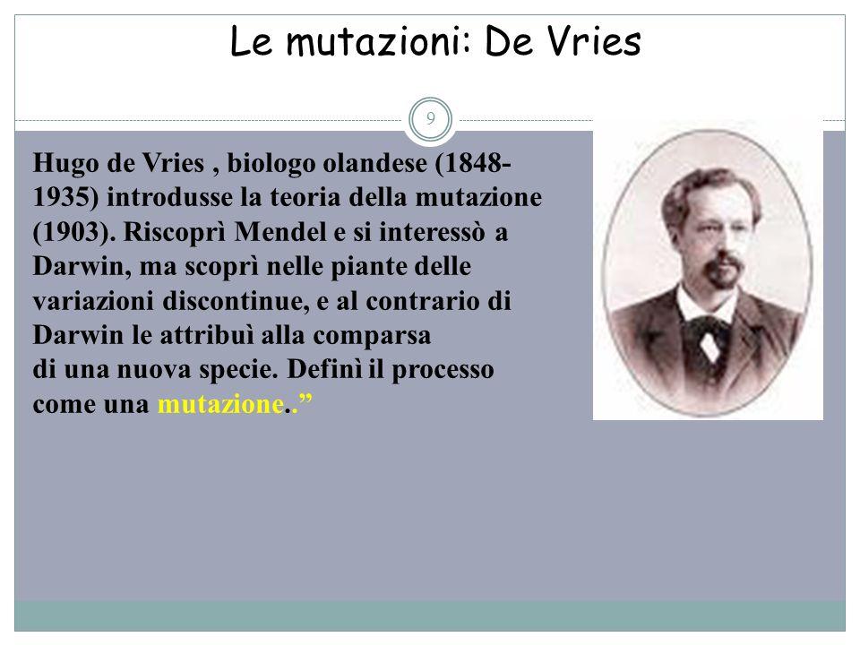 Le mutazioni: De Vries 9 Hugo de Vries, biologo olandese (1848- 1935) introdusse la teoria della mutazione (1903). Riscoprì Mendel e si interessò a Da