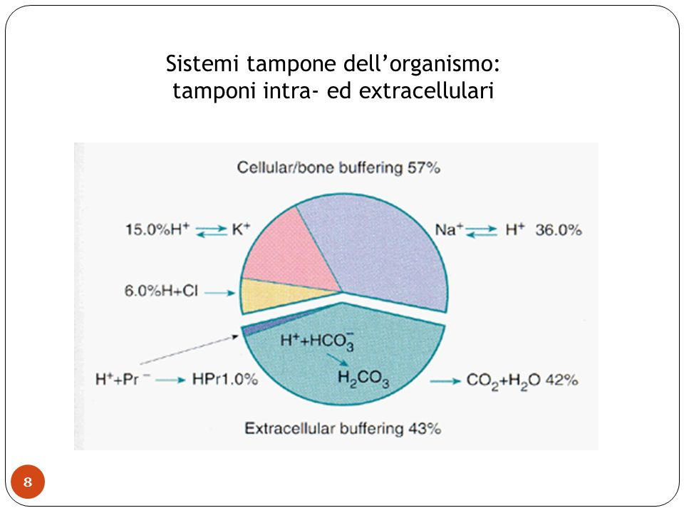Sistemi tampone dellorganismo: tamponi intra- ed extracellulari 8