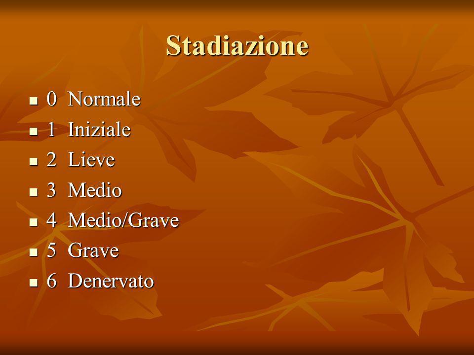 Stadiazione 0 Normale 0 Normale 1 Iniziale 1 Iniziale 2 Lieve 2 Lieve 3 Medio 3 Medio 4 Medio/Grave 4 Medio/Grave 5 Grave 5 Grave 6 Denervato 6 Denerv