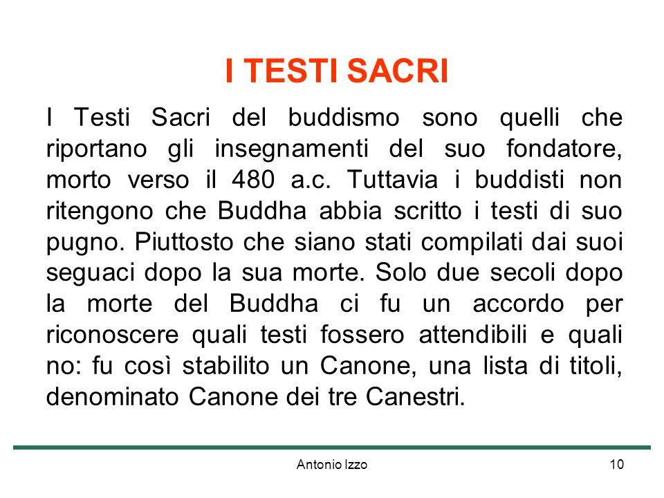Antonio Izzo10 I TESTI SACRI I Testi Sacri del buddismo sono quelli che riportano gli insegnamenti del suo fondatore, morto verso il 480 a.c. Tuttavia