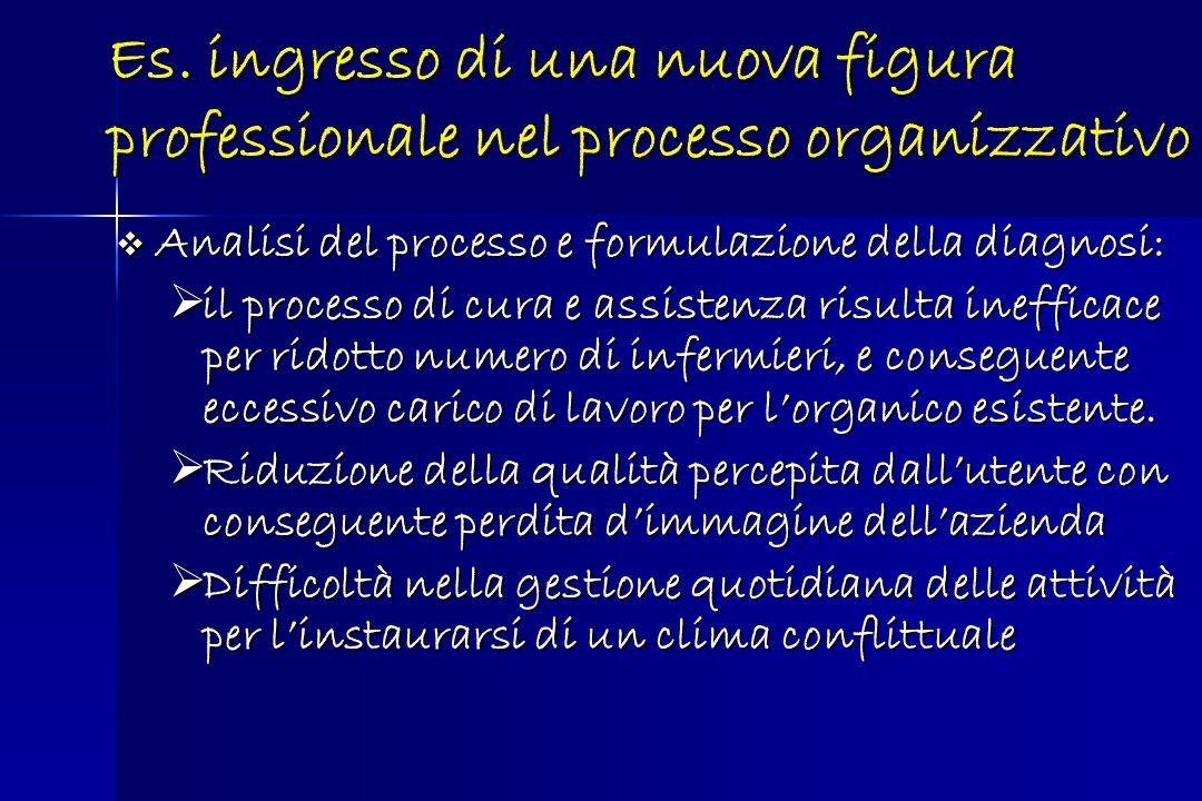 Analisi del processo e formulazione della diagnosi: Analisi del processo e formulazione della diagnosi: il processo di cura e assistenza risulta ineff