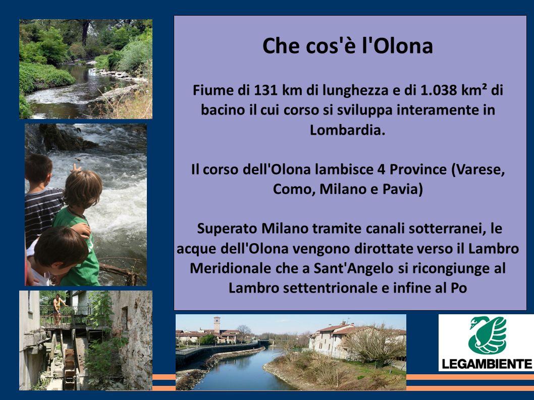 Che cos è l Olona Fiume di 131 km di lunghezza e di 1.038 km² di bacino il cui corso si sviluppa interamente in Lombardia.