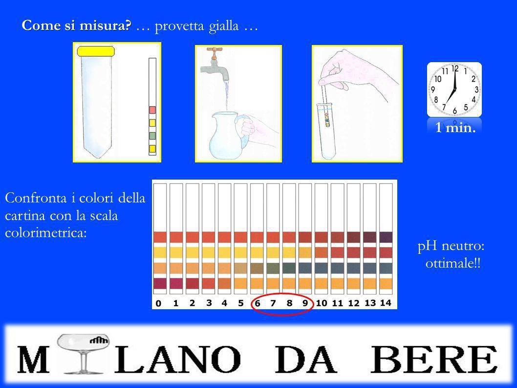 Come si misura? Come si misura? … provetta gialla … 1 min. Confronta i colori della cartina con la scala colorimetrica: pH neutro: ottimale!!