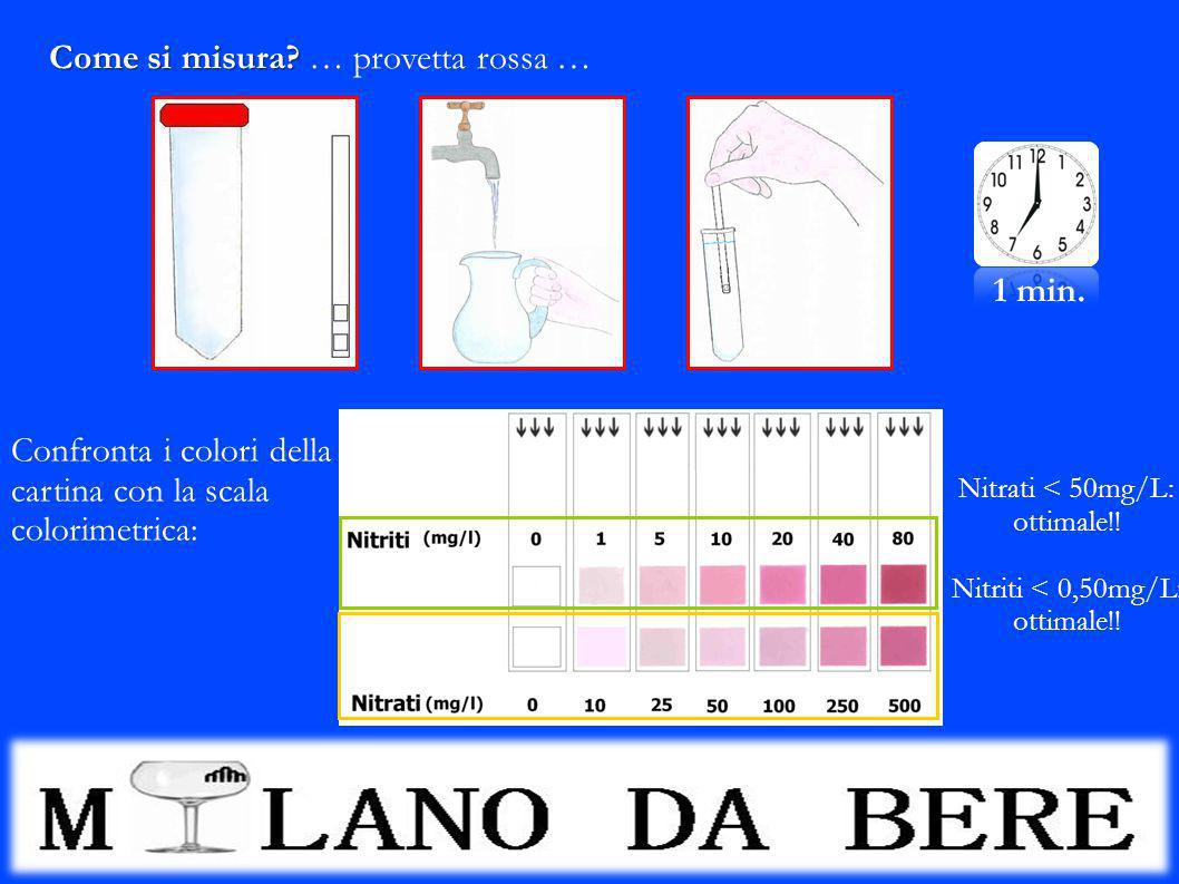 Come si misura? Come si misura? … provetta rossa … 1 min. Confronta i colori della cartina con la scala colorimetrica: Nitrati < 50mg/L: ottimale!! Ni