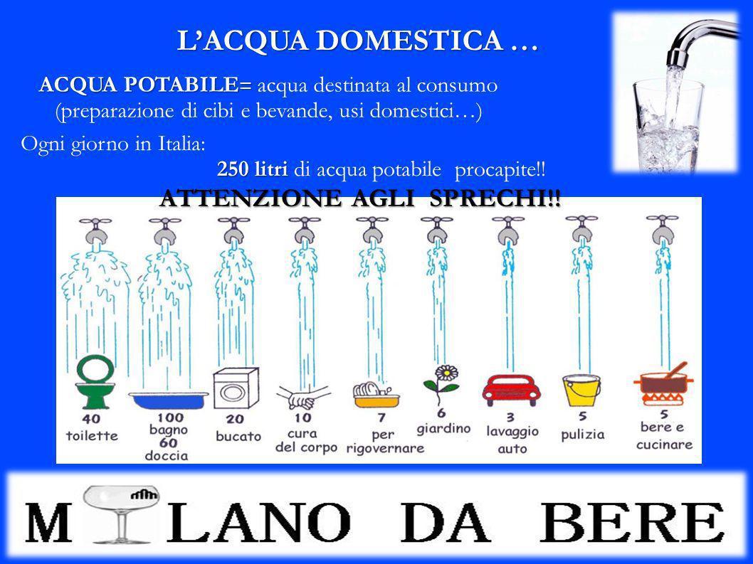 LACQUA DOMESTICA … ACQUA POTABILE = ACQUA POTABILE = acqua destinata al consumo (preparazione di cibi e bevande, usi domestici…) Ogni giorno in Italia
