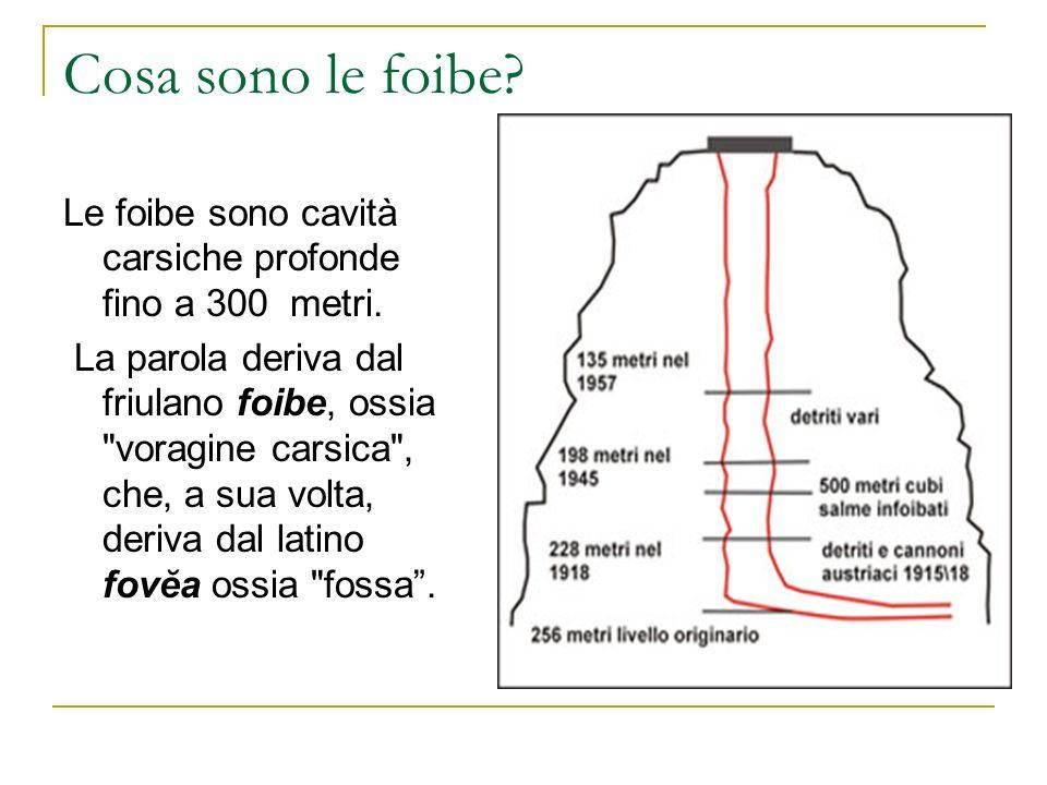 Cosa sono le foibe? Le foibe sono cavità carsiche profonde fino a 300 metri. La parola deriva dal friulano foibe, ossia
