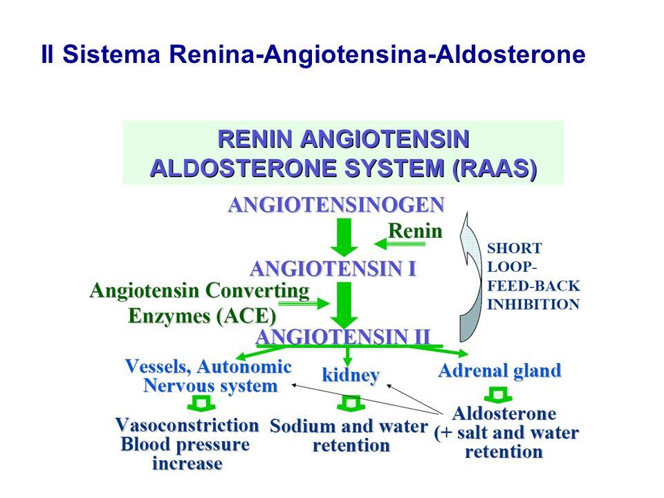 Il Sistema Renina-Angiotensina-Aldosterone