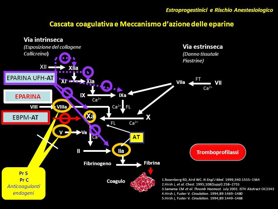 Cascata coagulativa e Meccanismo dazione delle eparine 1.Rosenberg RD, Aird WC. N Engl J Med. 1999;340:1555–1564 2.Hirsh J, et al. Chest. 1995;108(Sup