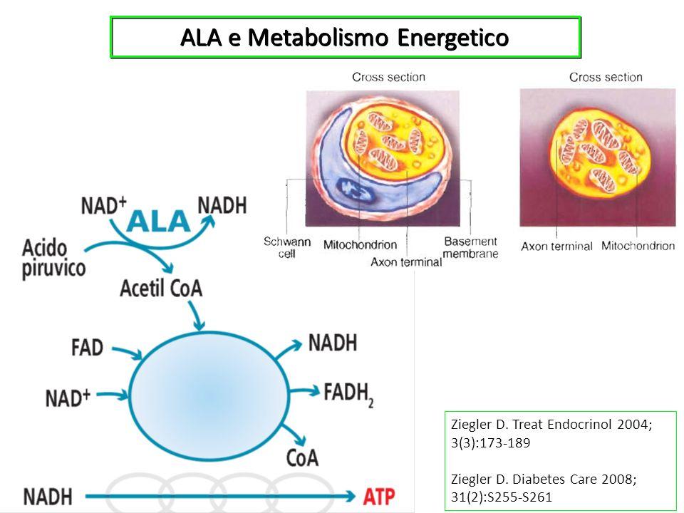 ALA e Metabolismo Energetico Ziegler D. Treat Endocrinol 2004; 3(3):173-189 Ziegler D. Diabetes Care 2008; 31(2):S255-S261