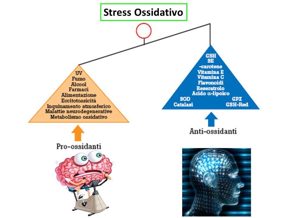 Patologie correlate a Stress Ossidativo