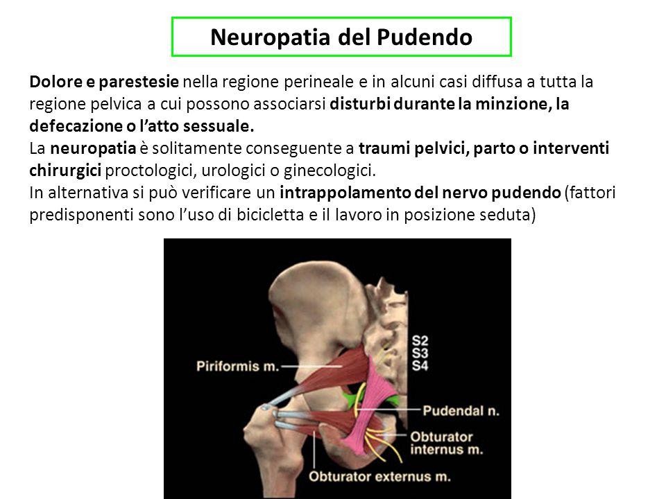 Neuropatia del Pudendo Dolore e parestesie nella regione perineale e in alcuni casi diffusa a tutta la regione pelvica a cui possono associarsi disturbi durante la minzione, la defecazione o latto sessuale.