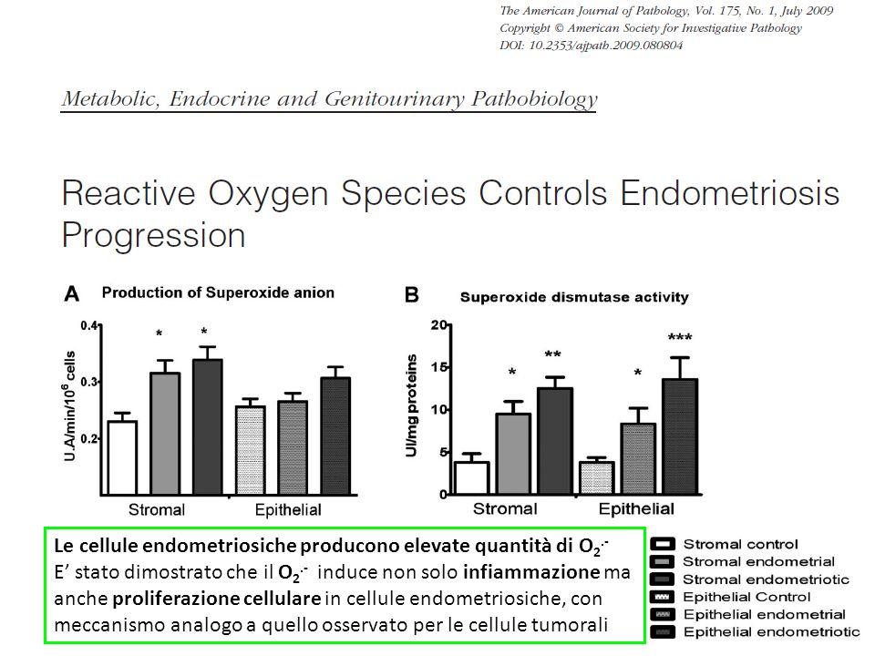 Le cellule endometriosiche producono elevate quantità di O 2.- E stato dimostrato che il O 2.- induce non solo infiammazione ma anche proliferazione c