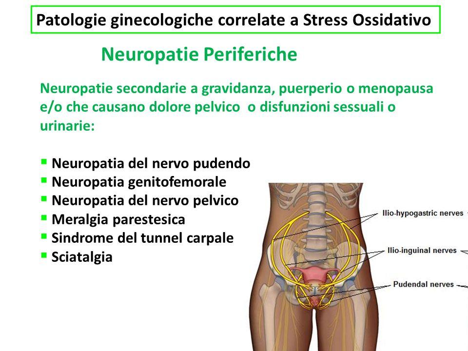 Neuropatie Periferiche Neuropatie secondarie a gravidanza, puerperio o menopausa e/o che causano dolore pelvico o disfunzioni sessuali o urinarie: Neuropatia del nervo pudendo Neuropatia genitofemorale Neuropatia del nervo pelvico Meralgia parestesica Sindrome del tunnel carpale Sciatalgia Patologie ginecologiche correlate a Stress Ossidativo