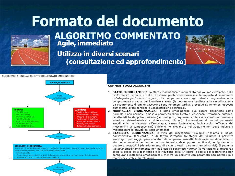 Formato del documento ALGORITMO COMMENTATO Agile, immediato Utilizzo in diversi scenari (consultazione ed approfondimento)