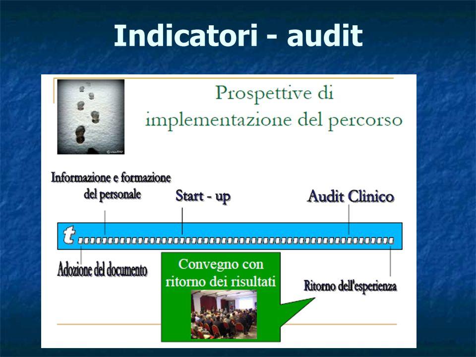 Indicatori - audit