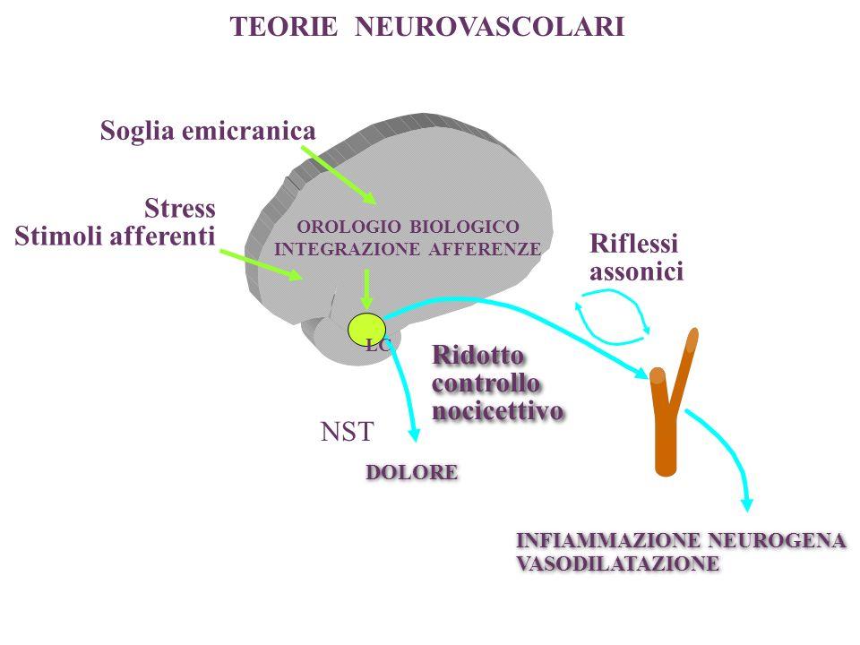 OROLOGIO BIOLOGICO INTEGRAZIONE AFFERENZE Stress Stimoli afferenti Soglia emicranica Riflessi assonici INFIAMMAZIONE NEUROGENA VASODILATAZIONE INFIAMM