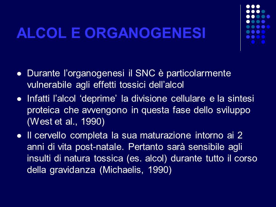 ALCOL E ORGANOGENESI Durante lorganogenesi il SNC è particolarmente vulnerabile agli effetti tossici dellalcol Infatti lalcol deprime la divisione cel