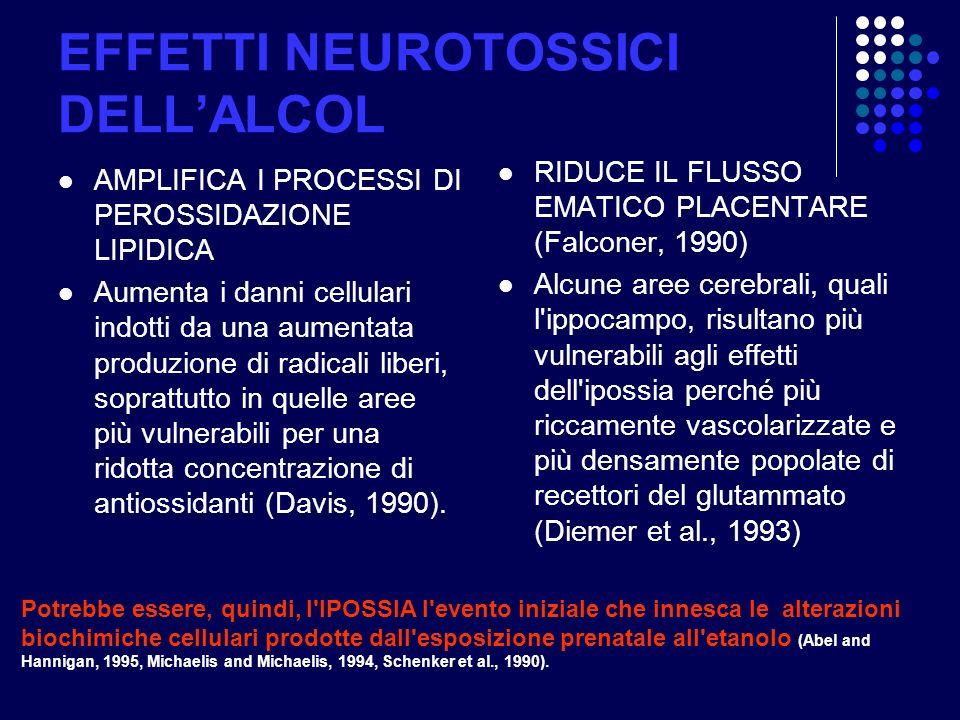 EFFETTI NEUROTOSSICI DELLALCOL AMPLIFICA I PROCESSI DI PEROSSIDAZIONE LIPIDICA Aumenta i danni cellulari indotti da una aumentata produzione di radica
