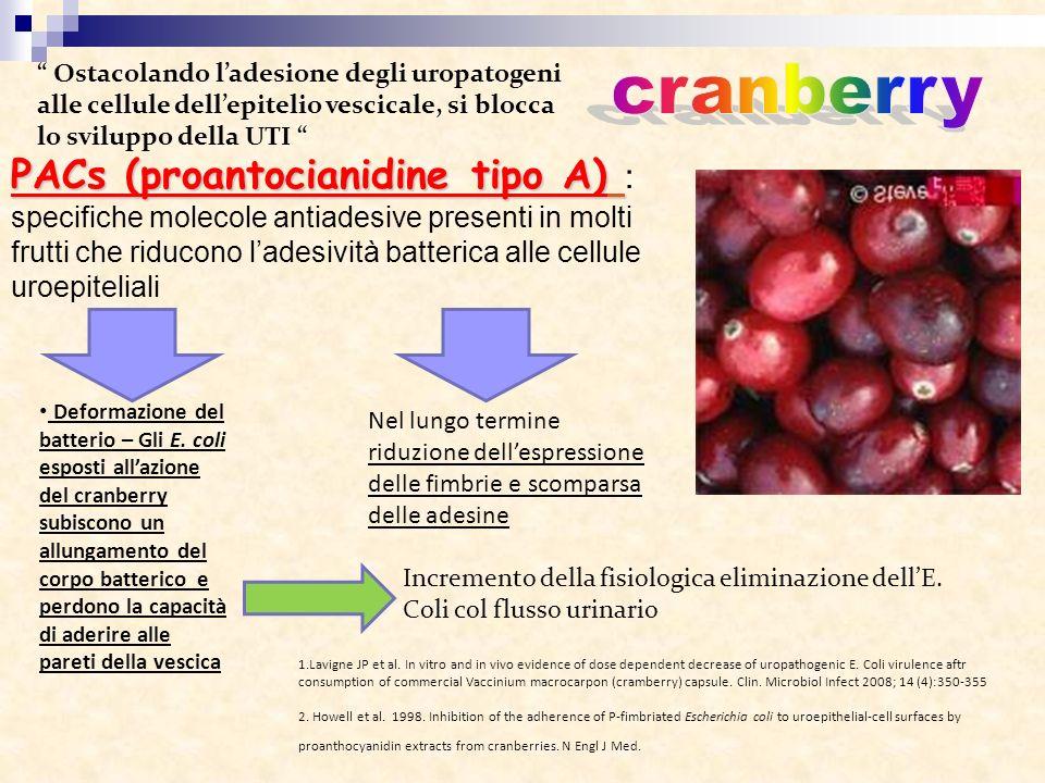 PACs (proantocianidine tipo A) PACs (proantocianidine tipo A) : specifiche molecole antiadesive presenti in molti frutti che riducono ladesività batte