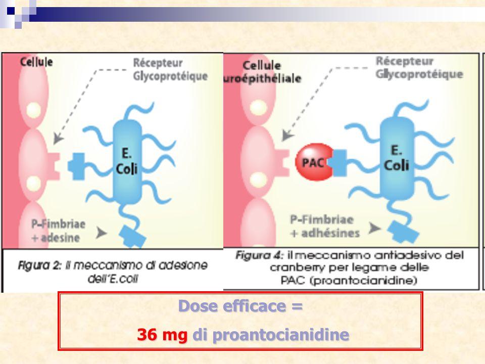 Dose efficace = 36 mg di proantocianidine 36 mg di proantocianidine