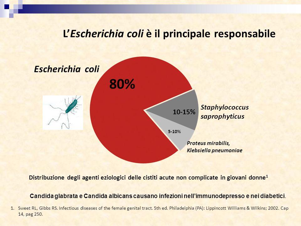 LEscherichia coli è il principale responsabile Distribuzione degli agenti eziologici delle cistiti acute non complicate in giovani donne 1 80% Escheri