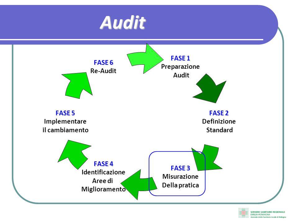 FASE 1 Preparazione Audit FASE 2 Definizione Standard FASE 3 Misurazione Della pratica FASE 4 Identificazione Aree di Miglioramento FASE 5 Implementare il cambiamento FASE 6 Re-AuditAudit