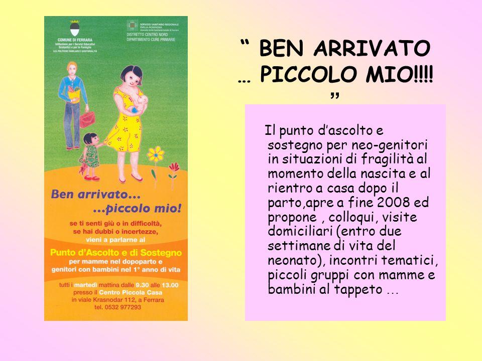 Gli Attori coinvolti nella realizzazione del progetto: Per il comune di Ferrara : Centro per le famiglie e Centro Bambini e Genitori con la struttura Piccola Casa.
