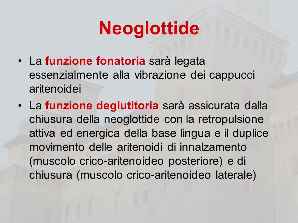 Neoglottide La funzione fonatoria sarà legata essenzialmente alla vibrazione dei cappucci aritenoidei La funzione deglutitoria sarà assicurata dalla c