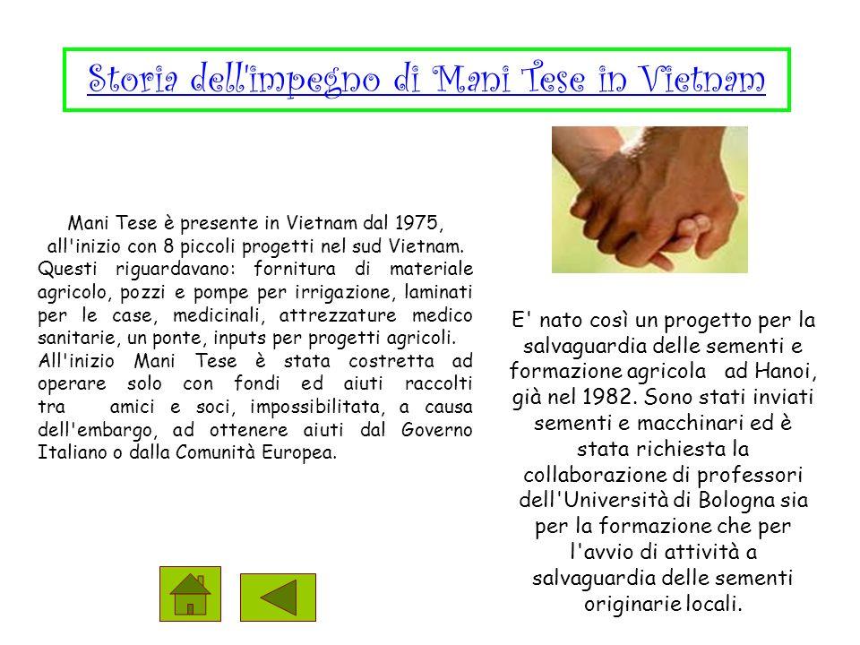 Mani Tese è presente in Vietnam dal 1975, all inizio con 8 piccoli progetti nel sud Vietnam.