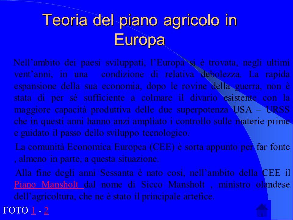 Teoria del piano agricolo in Europa Nellambito dei paesi sviluppati, lEuropa si è trovata, negli ultimi ventanni, in una condizione di relativa debole