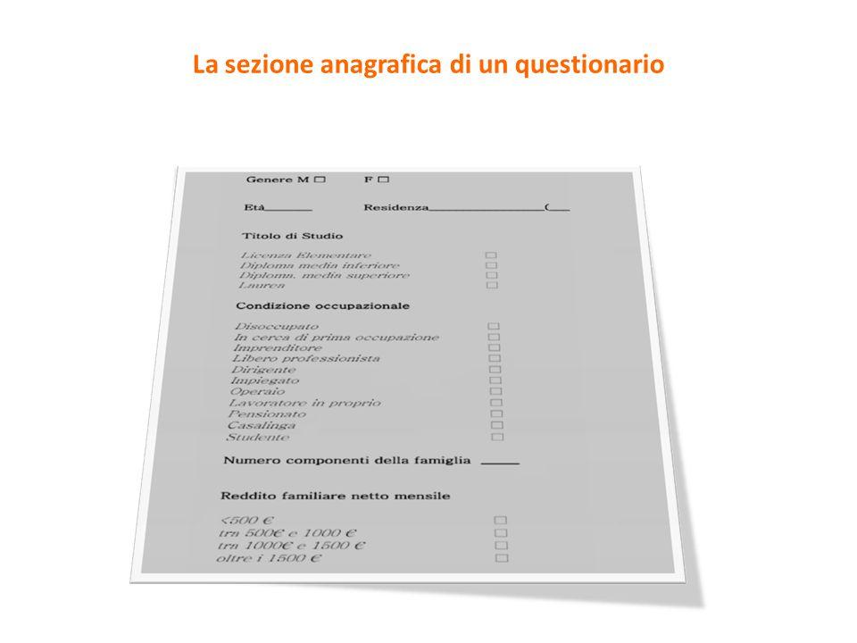 La sezione anagrafica di un questionario