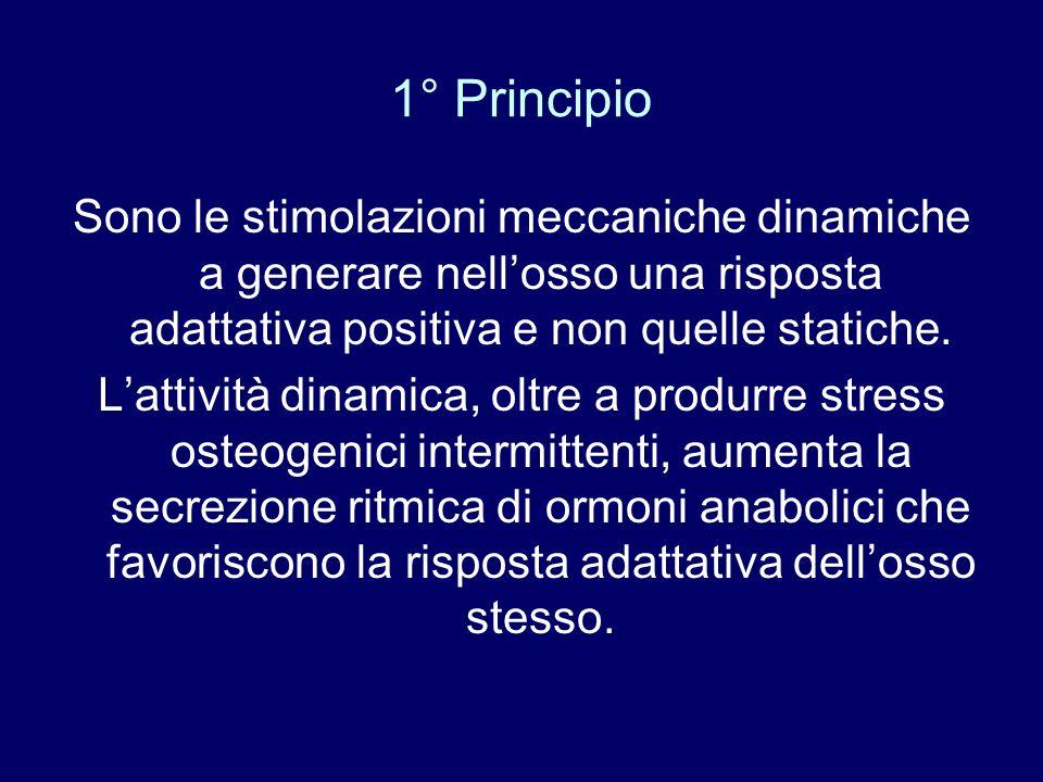 1° Principio Sono le stimolazioni meccaniche dinamiche a generare nellosso una risposta adattativa positiva e non quelle statiche. Lattività dinamica,