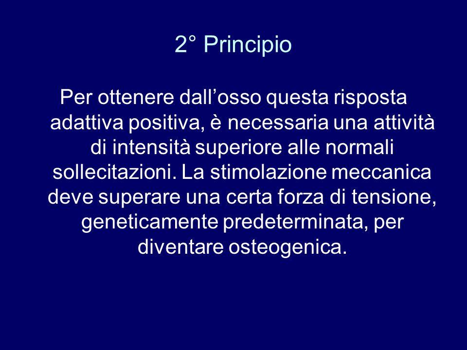 2° Principio Per ottenere dallosso questa risposta adattiva positiva, è necessaria una attività di intensità superiore alle normali sollecitazioni. La