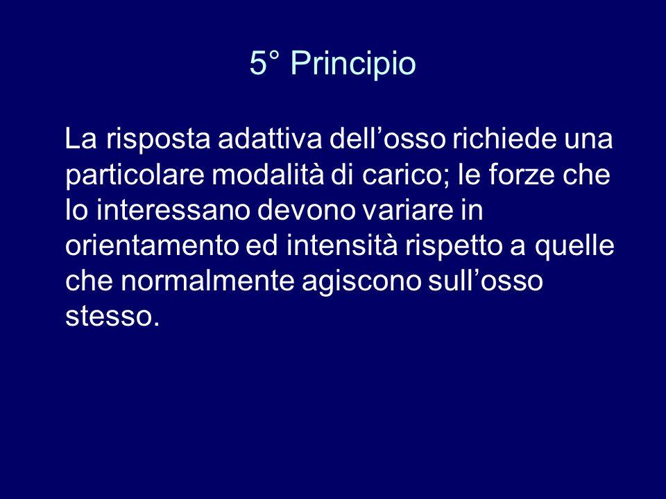 5° Principio La risposta adattiva dellosso richiede una particolare modalità di carico; le forze che lo interessano devono variare in orientamento ed
