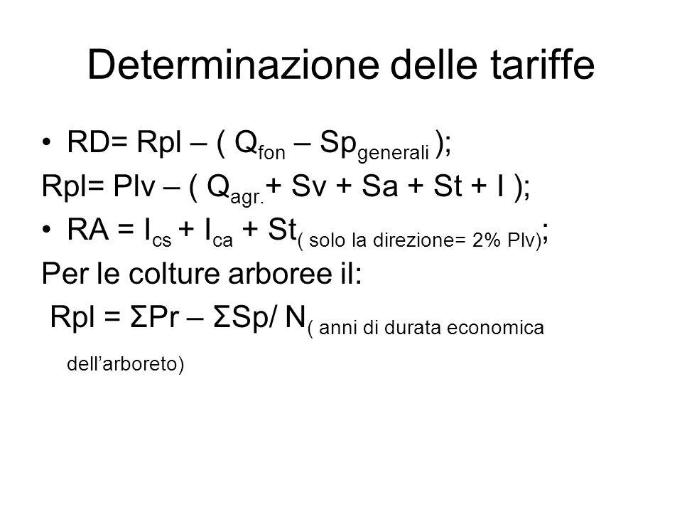Determinazione delle tariffe RD= Rpl – ( Q fon – Sp generali ); Rpl= Plv – ( Q agr. + Sv + Sa + St + I ); RA = I cs + I ca + St ( solo la direzione= 2