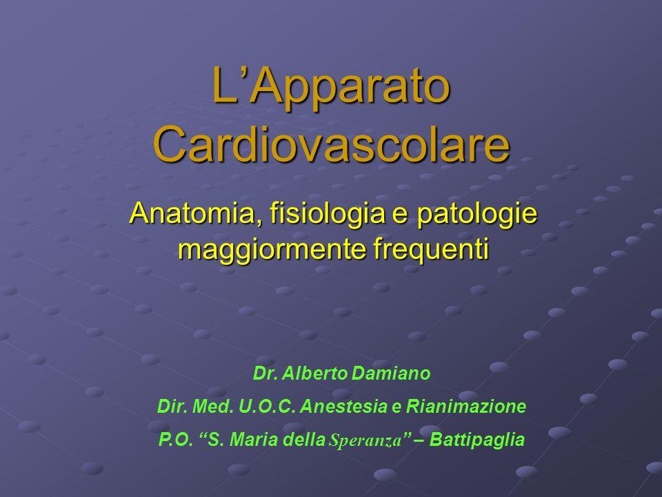 LApparato Cardiovascolare Anatomia, fisiologia e patologie maggiormente frequenti Dr. Alberto Damiano Dir. Med. U.O.C. Anestesia e Rianimazione P.O. S