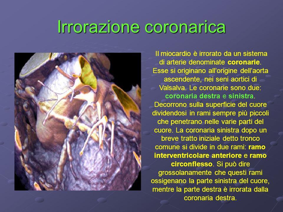 Irrorazione coronarica Il miocardio è irrorato da un sistema di arterie denominate coronarie. Esse si originano allorigine dellaorta ascendente, nei s