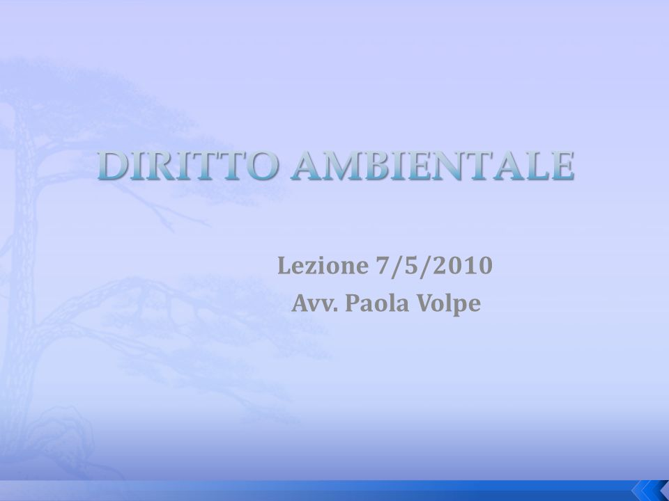 Lezione 7/5/2010 Avv. Paola Volpe