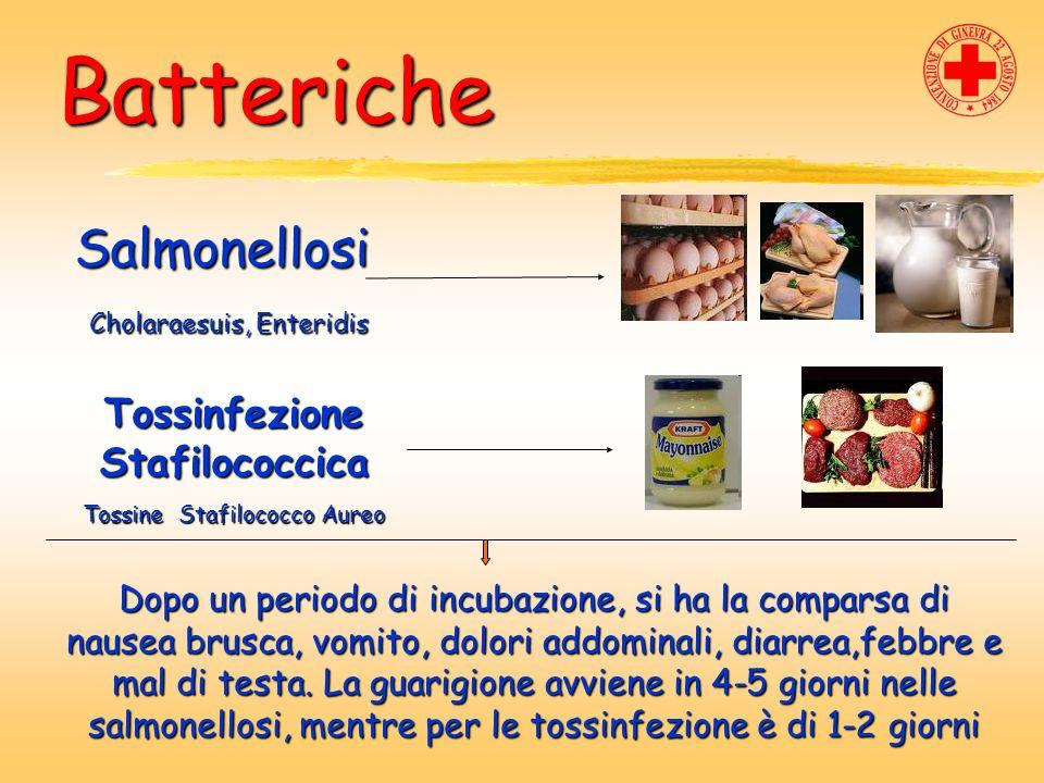 Batteriche Salmonellosi Cholaraesuis, Enteridis Cholaraesuis, Enteridis Tossinfezione Stafilococcica Tossine Stafilococco Aureo Dopo un periodo di inc