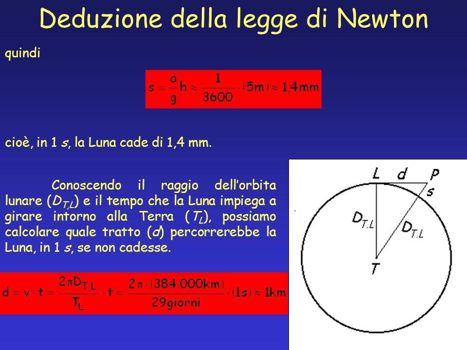 quindi cioè, in 1 s, la Luna cade di 1,4 mm. Deduzione della legge di Newton Conoscendo il raggio dellorbita lunare (D T,L ) e il tempo che la Luna im
