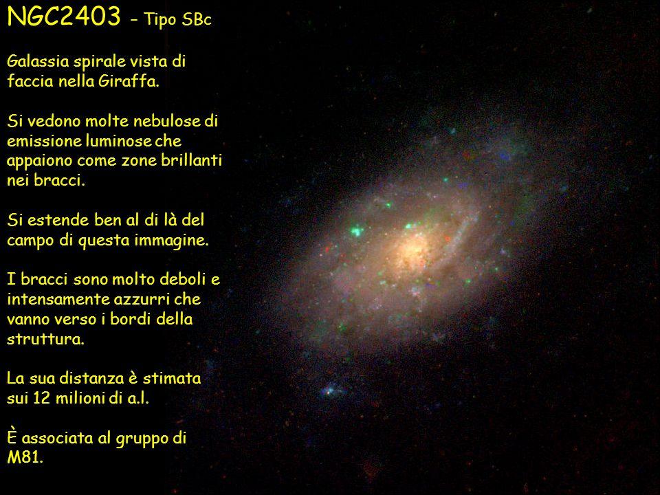 NGC2403 – Tipo SBc Galassia spirale vista di faccia nella Giraffa. Si vedono molte nebulose di emissione luminose che appaiono come zone brillanti nei