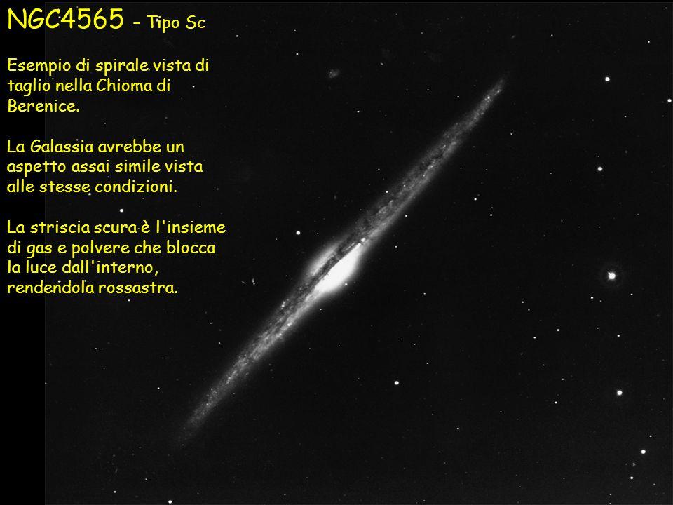 NGC4565 – Tipo Sc Esempio di spirale vista di taglio nella Chioma di Berenice. La Galassia avrebbe un aspetto assai simile vista alle stesse condizion