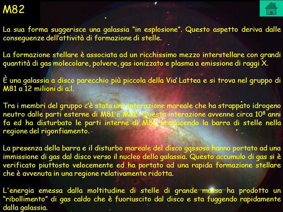 M82 La sua forma suggerisce una galassia in esplosione. Questo aspetto deriva dalle conseguenze dellattività di formazione di stelle. La formazione st