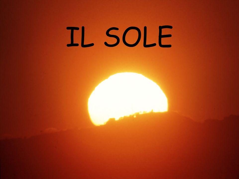 Il Sole è la stella più vicina alla Terra.