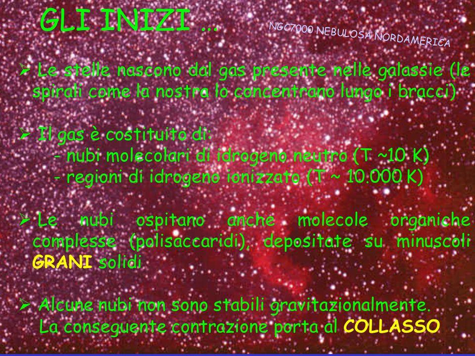 GLI INIZI … Le stelle nascono dal gas presente nelle galassie (le spirali come la nostra lo concentrano lungo i bracci) Il gas è costituito di: - nubi
