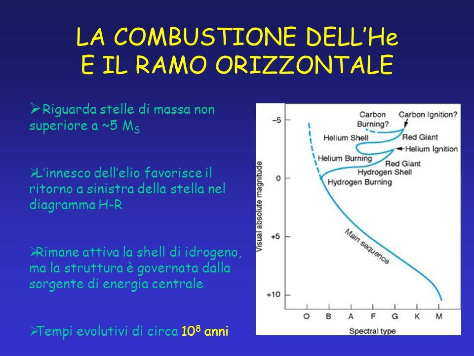 LA COMBUSTIONE DELLHe E IL RAMO ORIZZONTALE Riguarda stelle di massa non superiore a ~5 M S Linnesco dellelio favorisce il ritorno a sinistra della st