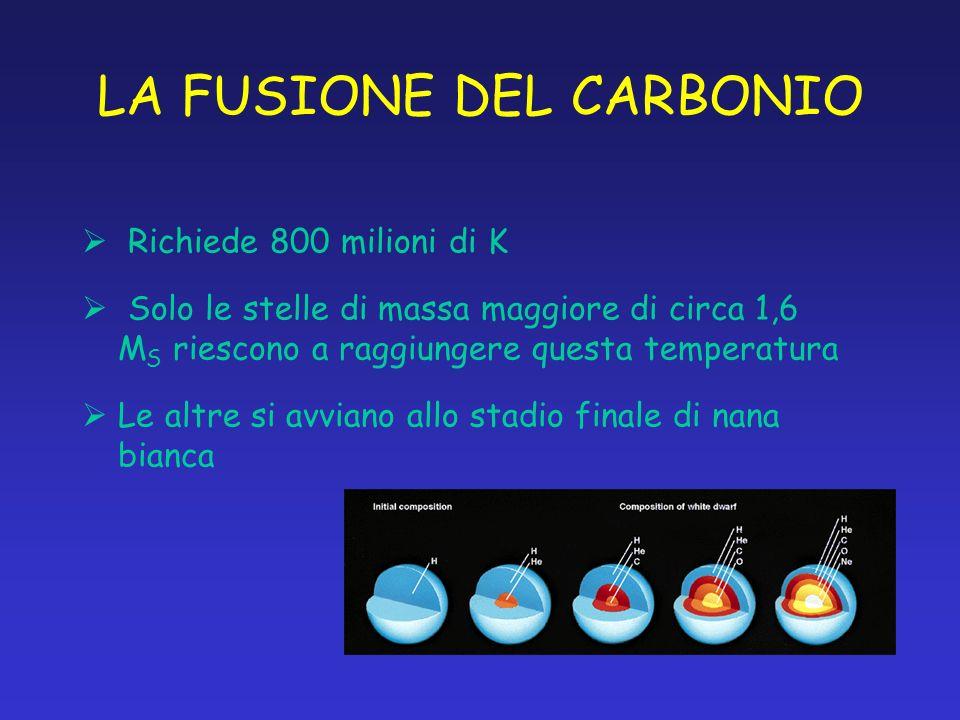 LA FUSIONE DEL CARBONIO Richiede 800 milioni di K Solo le stelle di massa maggiore di circa 1,6 M S riescono a raggiungere questa temperatura Le altre