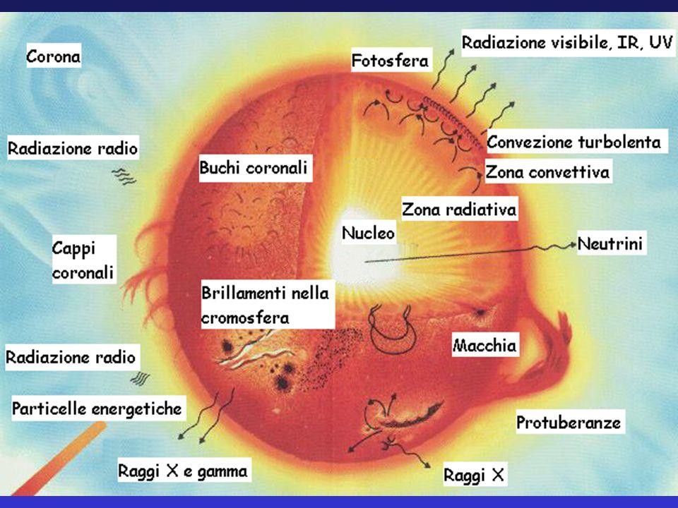 PRODUZIONE DI ENERGIA Lemissione continua di energia, finché dura, sostiene lequilibrio della stella Tale emissione è proporzionata alla spinta della gravità La forza di gravità è proporzionale alla massa della struttura La massa della stella determina allora la produzione di energia… … e quindi anche luminosità, temperatura e tipo di reazioni nucleari che avvengono allinterno della stella (ammesso che siano presenti gli elementi adatti a fungere da combustibile) CONCLUSIONE: LA MASSA E LA COMPOSIZIONE CHIMICA SONO I PARAMETRI ESSENZIALI PER LA COMPRENSIONE DEL FUNZIONAMENTO DELLE STELLE