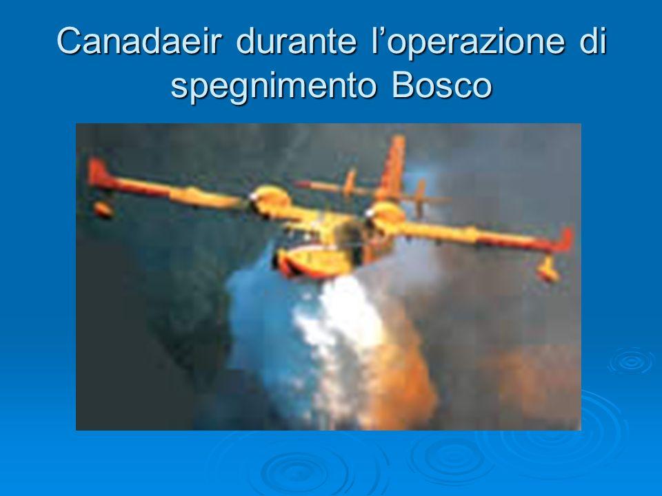 Canadaeir durante loperazione di spegnimento Bosco